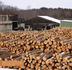 Hull Forest Products log yard Pomfret CT
