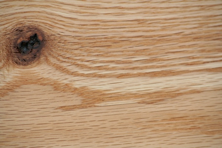 Detailed view of the rays in the grain of Red Oak.