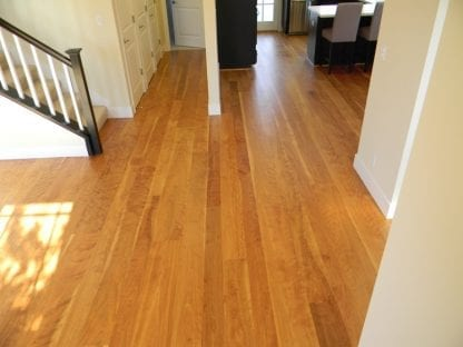 Birch Floors - Red Heartwood Curly Birch