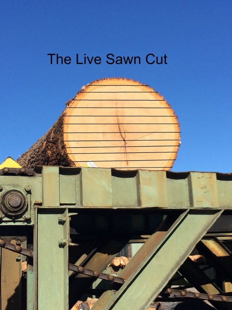 Oak log sits on log deck waiting to be live sawn