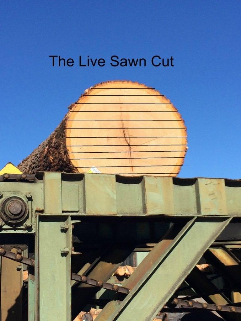 Oak log sits on log deck waiting to be live sawn